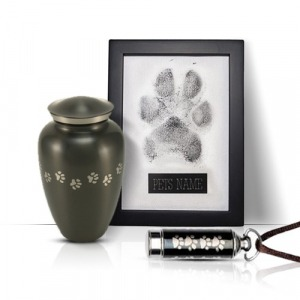 Paw print on a nice frame, along with an urn and a pet's tag